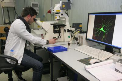 Coronavirus, ricercatori spagnoli testano farmaco su reni artificiali