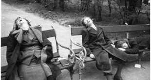 Crimini di guerra Alleati, tradotto in italiano il memorandum di Darmstadt